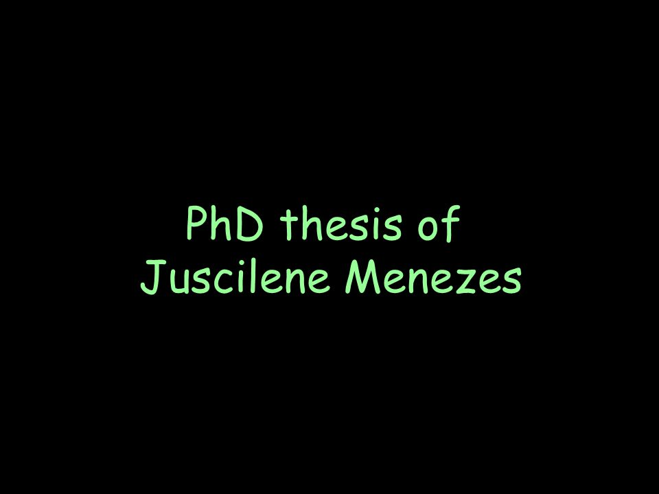 PhD thesis of Juscilene Menezes