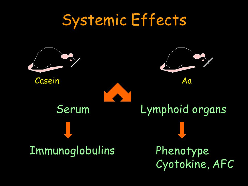 Systemic Effects.. Lymphoid organsSerum Immunoglobulins Phenotype Cyotokine, AFC CaseinAa