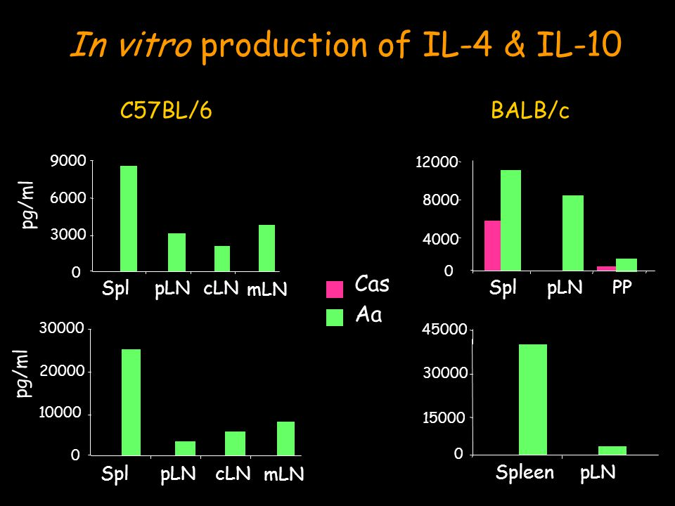 C57BL/6 BALB/c Cas Aa In vitro production of IL-4 & IL-10 0 3000 6000 9000 SplpLNcLN 0 4000 8000 12000 SplpLNPP pg/ml mLN 0 10000 20000 30000 SplpLNcLN 0 15000 30000 45000 SpleenpLN pg/ml mLN