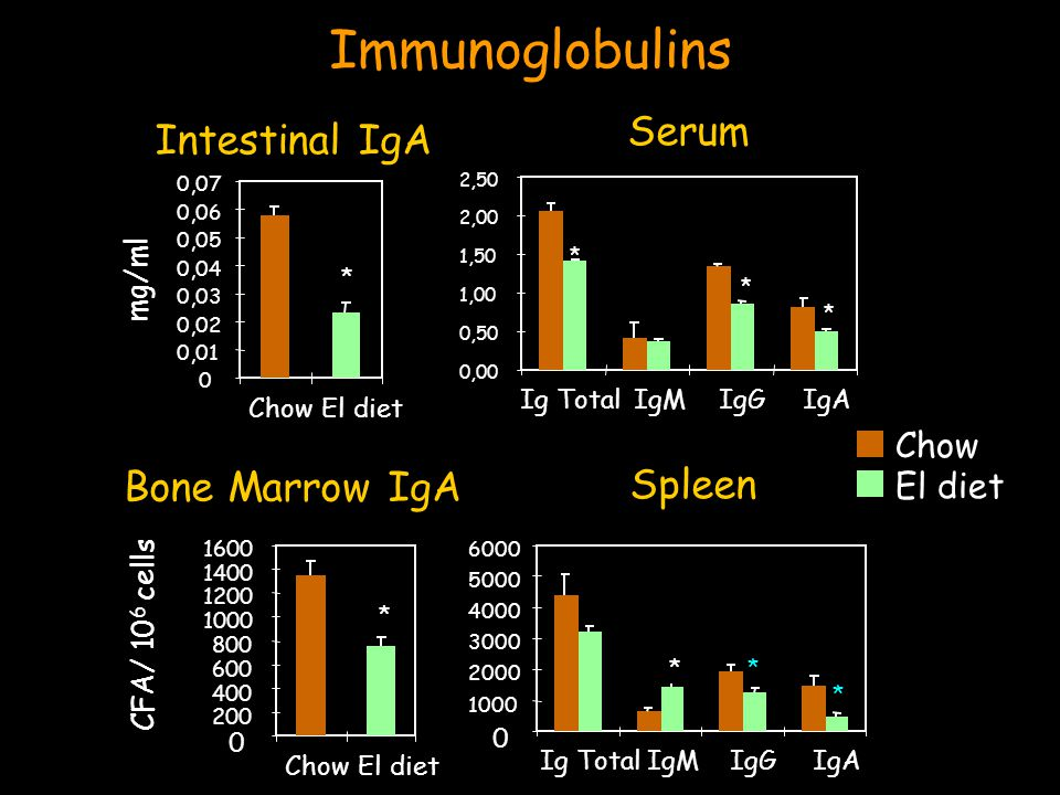 Immunoglobulins Serum 0,00 0,50 1,00 1,50 2,00 2,50 Ig TotalIgMIgGIgA Chow El diet * * * Intestinal IgA 0 0,01 0,02 0,03 0,04 0,05 0,06 0,07 ChowEl diet mg/ml * Spleen Ig TotalIgMIgGIgA * * * Bone Marrow IgA ChowEl diet * CFA/ 10 6 cells