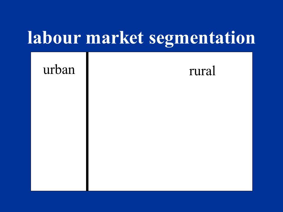 labour market segmentation men women