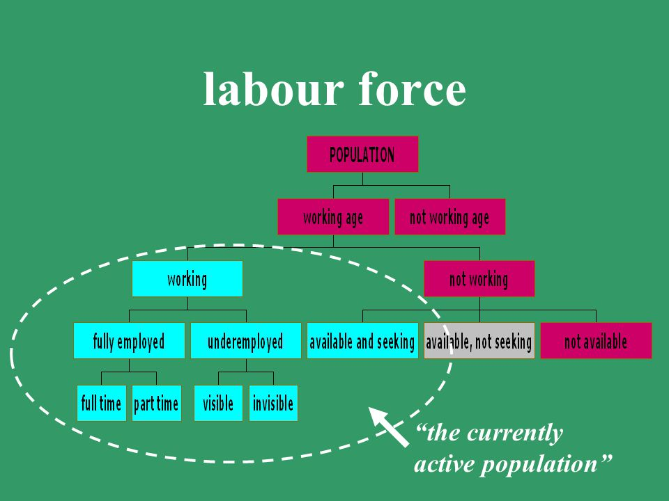 labour force all those above a specified age, and during a specified brief period, who are either working, or available for work and seeking it also k