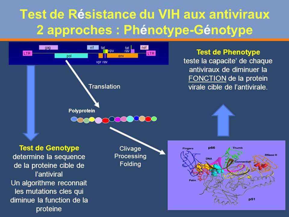 Test de Résistance du VIH aux antiviraux 2 approches : Phénotype-Génotype Translation Polyprotein Test de Genotype determine la sequence de la proteine cible de lantiviral Un algorithme reconnait les mutations cles qui diminue la function de la proteine Test de Phenotype teste la capacite de chaque antiviraux de diminuer la FONCTION de la protein virale cible de lantivirale.