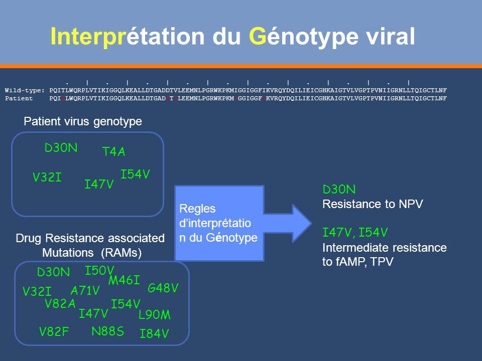 Interprétation du Génotype viral V82A V32I L90M A71V I47V I84V V82F M46I G48V D30N I50V I54V N88S.