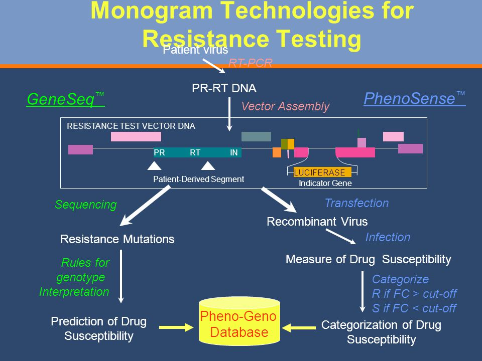 Monogram Technologies for Resistance Testing GeneSeq Sequencing Resistance Mutations Prediction of Drug Susceptibility Rules for genotype Interpretation PhenoSense Recombinant Virus Transfection Measure of Drug Susceptibility Infection Patient virus PR-RT DNA RT-PCR Vector Assembly Categorization of Drug Susceptibility Categorize R if FC > cut-off S if FC < cut-off PR Patient-Derived Segment Indicator Gene RTIN LUCIFERASE RESISTANCE TEST VECTOR DNA Pheno-Geno Database