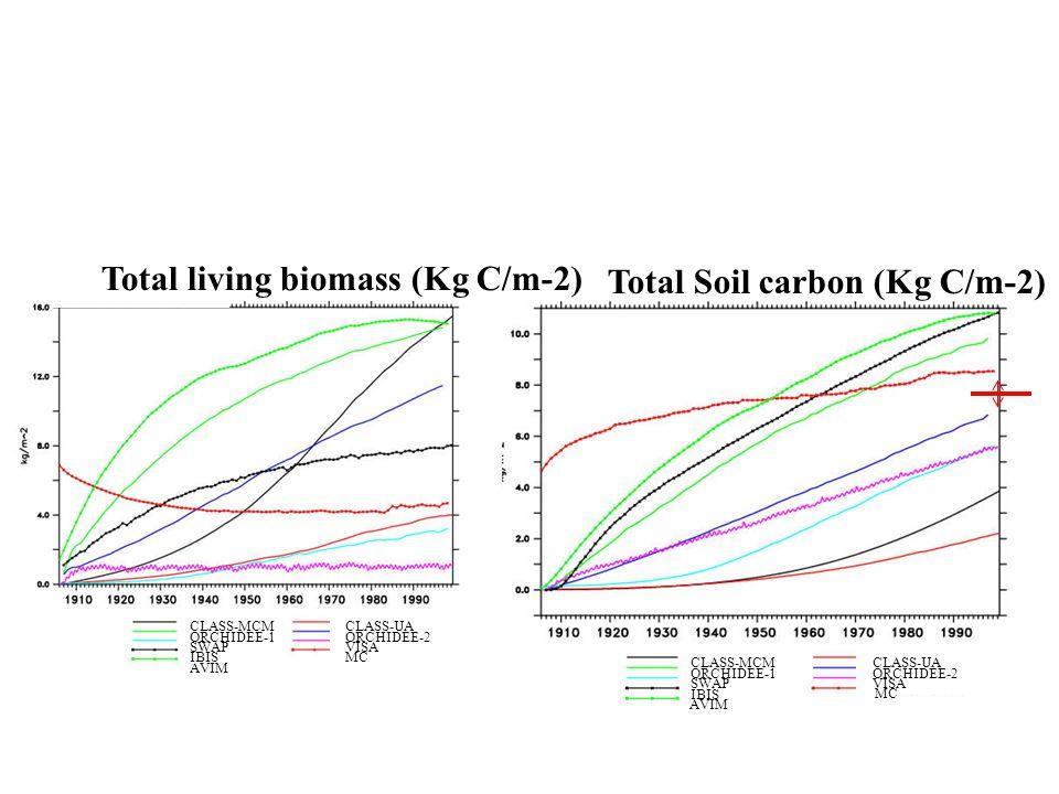CLASS-MCMCLASS-UA ORCHIDEE-1ORCHIDEE-2 SWAP IBIS VISA Total Soil carbon (Kg C/m-2) MC AVIM CLASS-MCMCLASS-UA ORCHIDEE-1ORCHIDEE-2 SWAP IBIS VISA Total living biomass (Kg C/m-2) MC AVIM