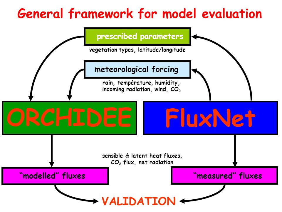 ORCHIDEE General framework for model evaluation FluxNet rain, température, humidity, incoming radiation, wind, CO 2 meteorological forcing vegetation