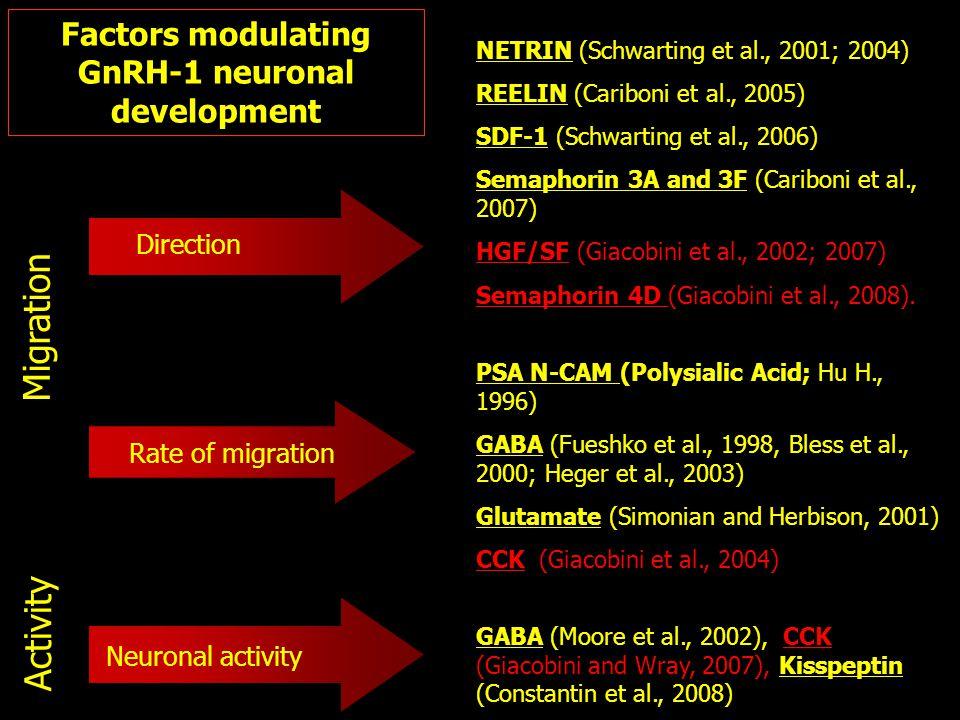 Rate of migration PSA N-CAM (Polysialic Acid; Hu H., 1996) GABA (Fueshko et al., 1998, Bless et al., 2000; Heger et al., 2003) Glutamate (Simonian and Herbison, 2001) CCK (Giacobini et al., 2004) Direction NETRIN (Schwarting et al., 2001; 2004) REELIN (Cariboni et al., 2005) SDF-1 (Schwarting et al., 2006) Semaphorin 3A and 3F (Cariboni et al., 2007) HGF/SF (Giacobini et al., 2002; 2007) Semaphorin 4D (Giacobini et al., 2008).