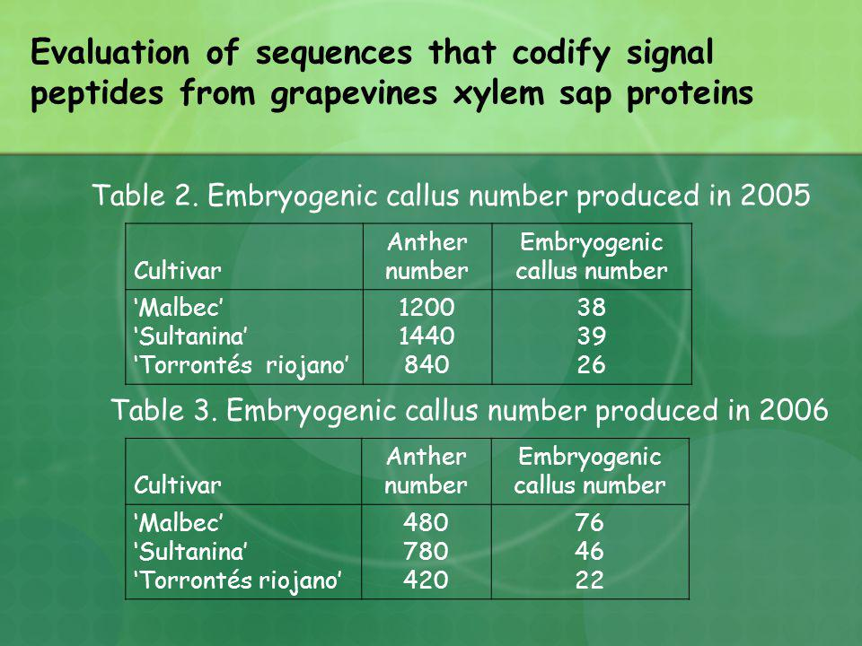 Table 2. Embryogenic callus number produced in 2005 Cultivar Anther number Embryogenic callus number Malbec Sultanina Torrontés riojano 1200 1440 840