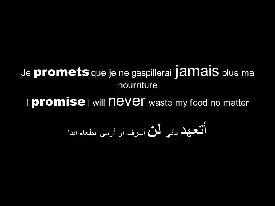 I promise I will never waste my food no matter أتعهد بأني لن أسرف أو أرمي الطعام ابدا Je promets que je ne gaspillerai jamais plus ma nourriture