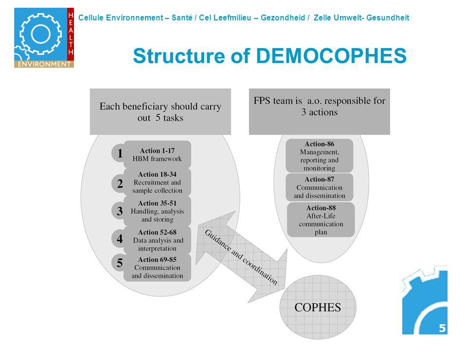 Cellule Environnement – Santé / Cel Leefmilieu – Gezondheid / Zelle Umwelt- Gesundheit 5 Structure of DEMOCOPHES