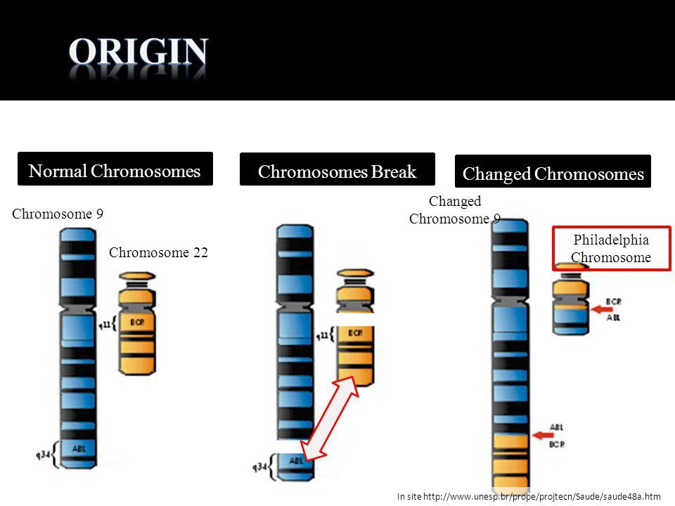 Chromosome 9 Chromosome 22 Normal Chromosomes Chromosomes Break Changed Chromosomes Philadelphia Chromosome Changed Chromosome 9 In site http://www.un