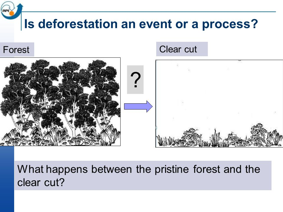 Is deforestation an event or a process? What happens between the pristine forest and the clear cut? ? Forest Clear cut