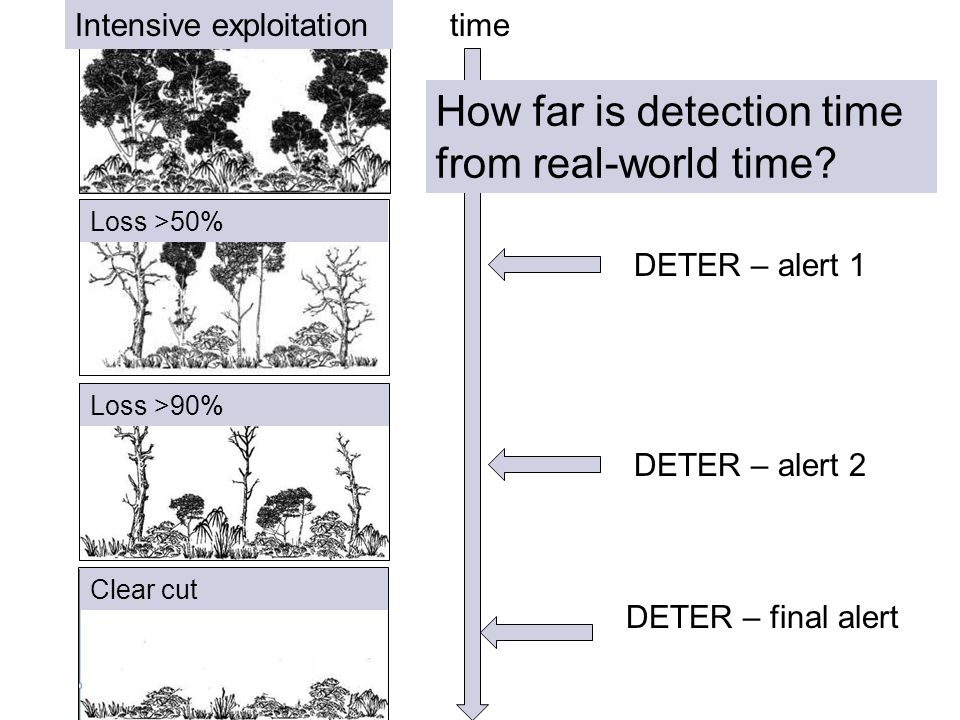 Exploração intensiva Floresta Perda >90% do dossel Corte raso Perda >50% do dossel time DETER – alert 1 How far is detection time from real-world time