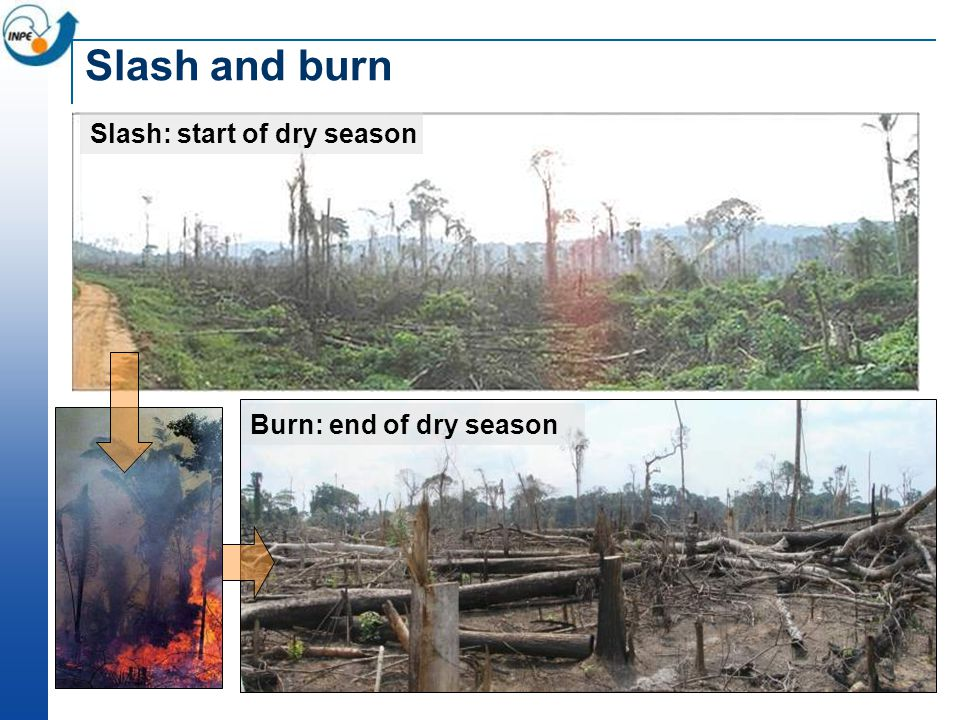 Slash and burn Burn: end of dry season Slash: start of dry season