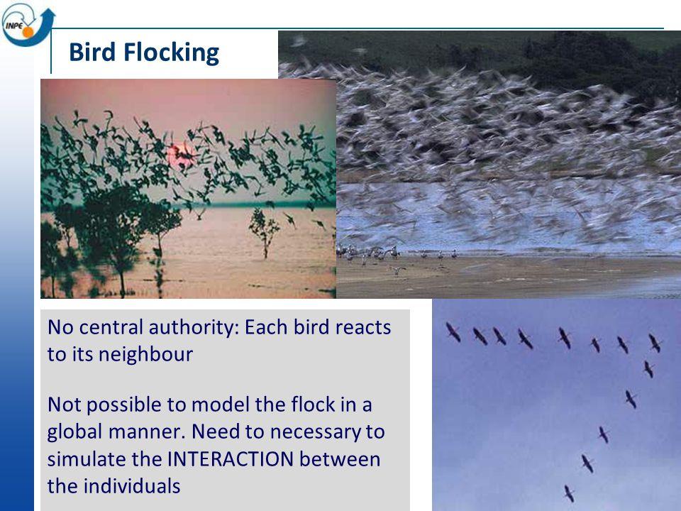 Agents: autonomy, flexibility, interaction Synchronization of fireflies