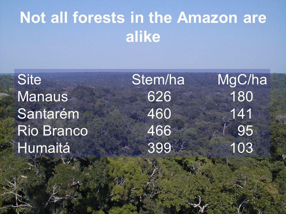 Not all forests in the Amazon are alike SiteStem/haMgC/ha Manaus 626 180 Santarém 460 141 Rio Branco 466 95 Humaitá 399 103