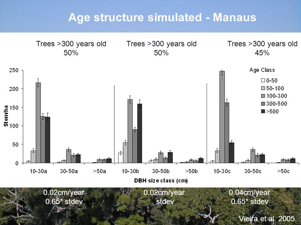 Age structure simulated - Manaus 0.04cm/year 0.65* stdev 0.02cm/year stdev 0.02cm/year 0.65* stdev Trees >300 years old 50% Trees >300 years old 50% Trees >300 years old 45% Vieira et al.