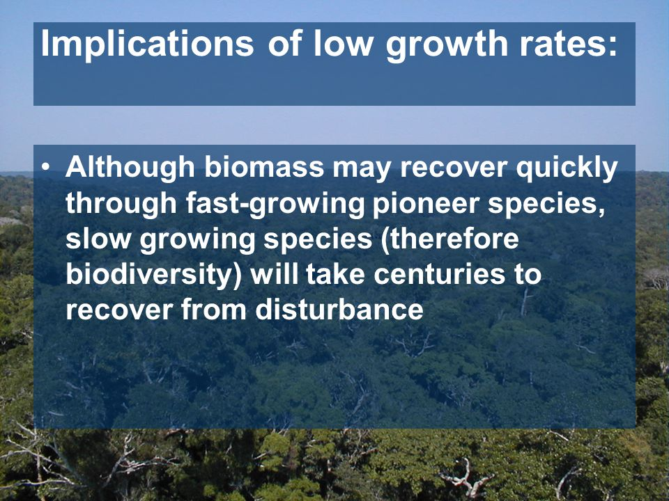 Although biomass may recover quickly through fast-growing pioneer species, slow growing species (therefore biodiversity) will take centuries to recover from disturbance Implications of low growth rates: