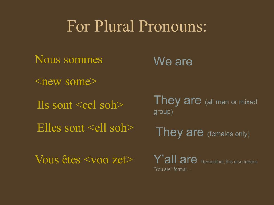For Plural Pronouns: Nous sommes Ils sont Elles sont We are They are (all men or mixed group) They are (females only) Vous êtes Yall are Remember, this also means You are formal…