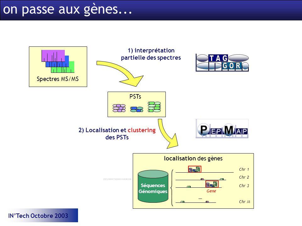 INTech Octobre 2003 Spectres MS/MS 1) interprétation partielle des spectres PSTs Séquences Génomiques Chr 1 Chr 2 Chr 3 Chr M … Gene localisation des gènes 2) Localisation et clustering des PSTs on passe aux gènes...