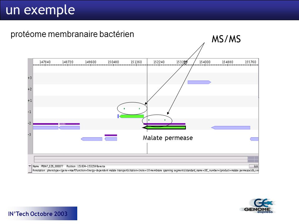 INTech Octobre 2003 Malate permease protéome membranaire bactérien un exemple MS/MS
