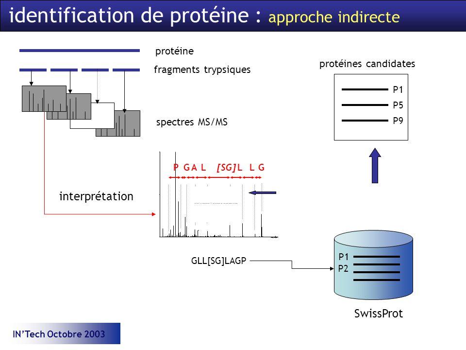 INTech Octobre 2003 identification de protéine : approche indirecte protéine fragments trypsiques spectres MS/MS P1 P5 P9 protéines candidates interprétation GLL[SG]LAGP SwissProt P1 P2 GLLGLAP[SG]