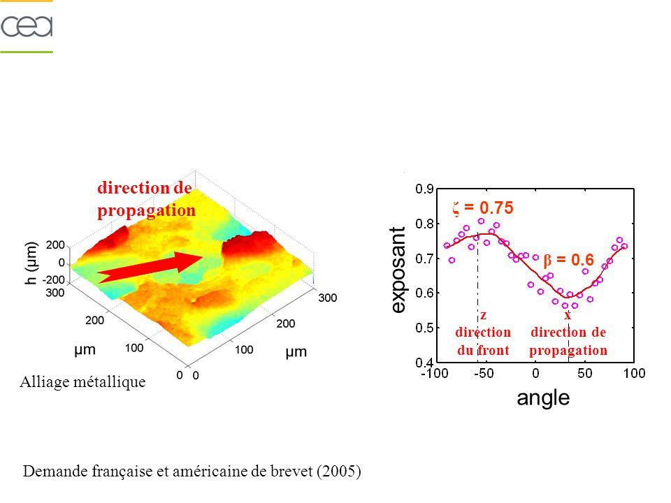 exposant angle Alliage métallique z direction du front x direction de propagation Demande française et américaine de brevet (2005) direction de propagation ζ = 0.75 β = 0.6