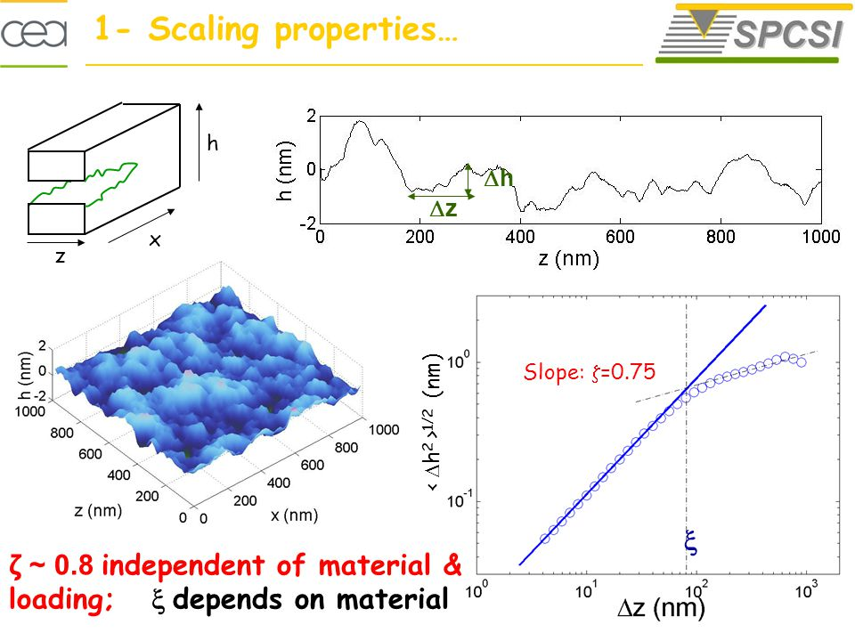 x z h z h 1- Scaling properties… =0.75 Self-affine profile 1/2 (nm) Slope: =0.75 ζ ~ 0.8 independent of material & loading; depends on material