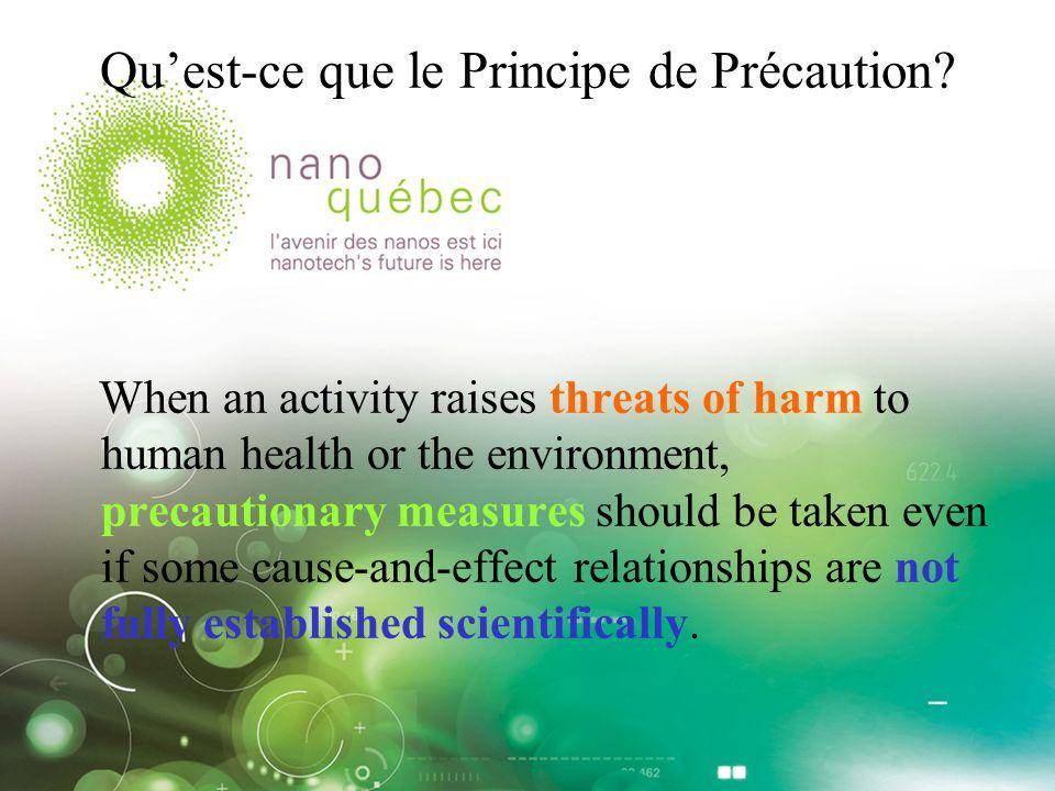 Pourquoi et comment appliquer le PP aux nanotechnologies.