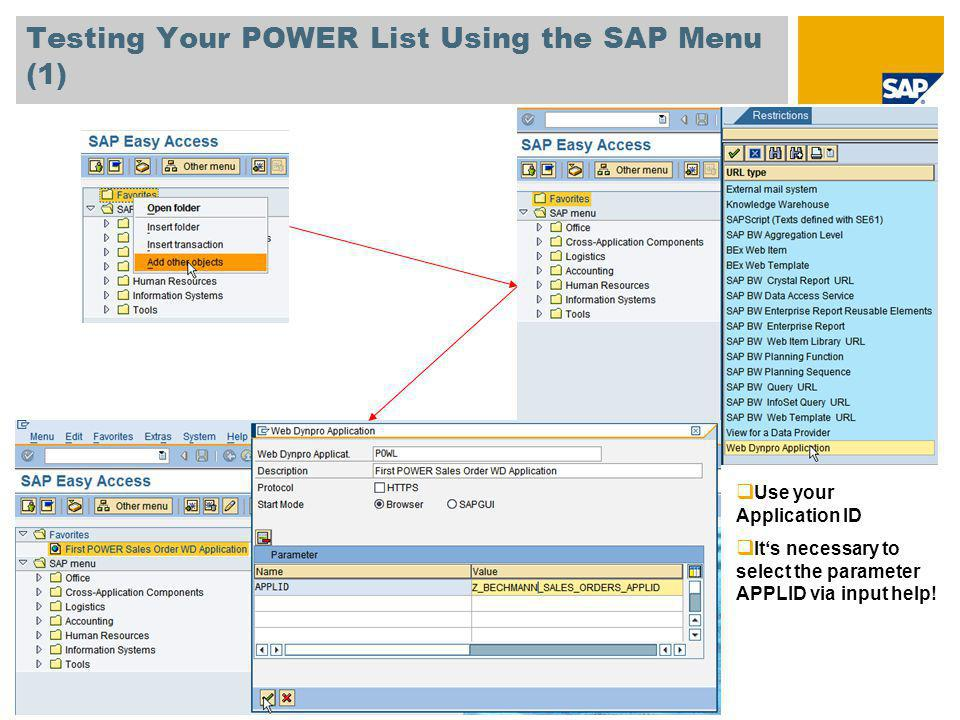 Testing Your POWER List Using the SAP Menu (1) Use your Application ID Its necessary to select the parameter APPLID via input help!
