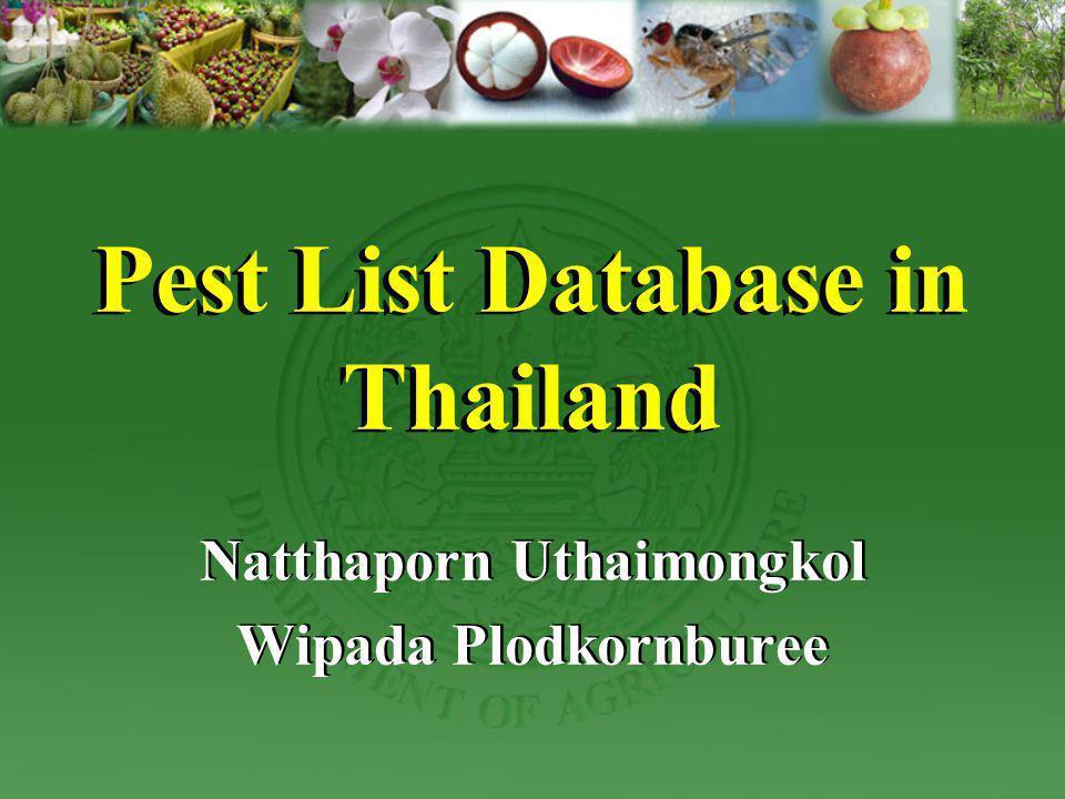 Pest List Database in Thailand Natthaporn Uthaimongkol Wipada Plodkornburee Natthaporn Uthaimongkol Wipada Plodkornburee