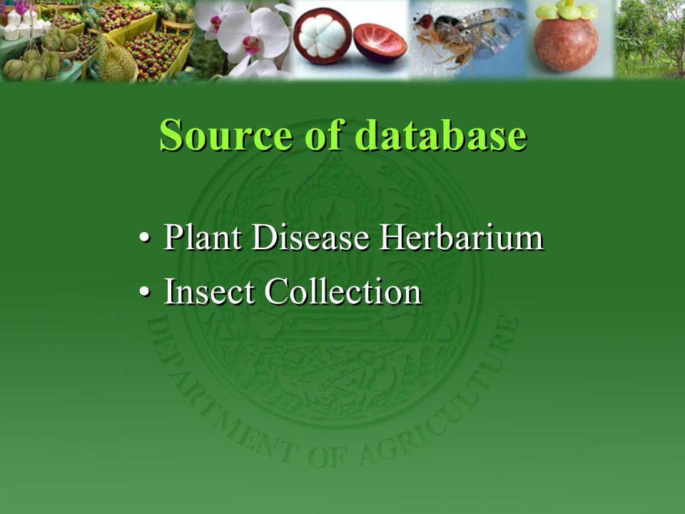 Source of database Plant Disease Herbarium Insect Collection Plant Disease Herbarium Insect Collection