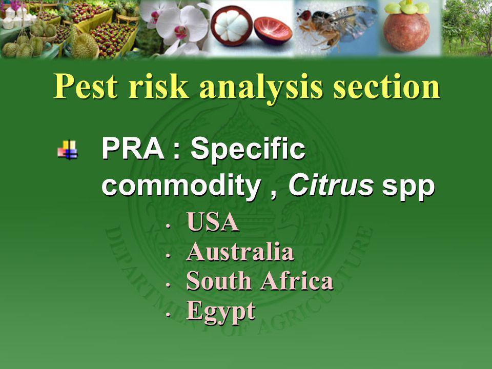 USA Australia South Africa Egypt USA Australia South Africa Egypt Pest risk analysis section PRA : Specific commodity, Citrus spp
