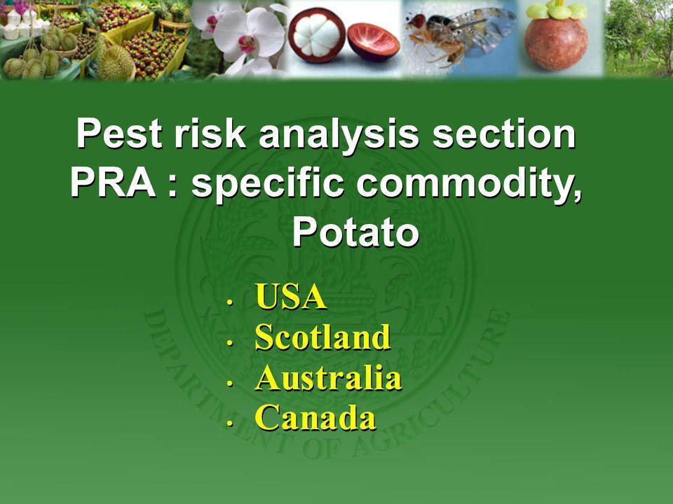 USA Scotland Australia Canada USA Scotland Australia Canada Pest risk analysis section PRA : specific commodity, Potato Pest risk analysis section PRA
