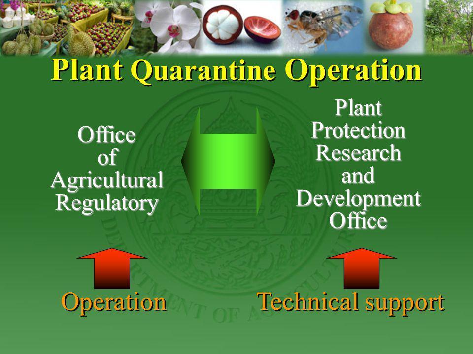 Plant Quarantine Operation OfficeofAgriculturalRegulatory PlantProtectionResearchandDevelopmentOffice Operation Technical support