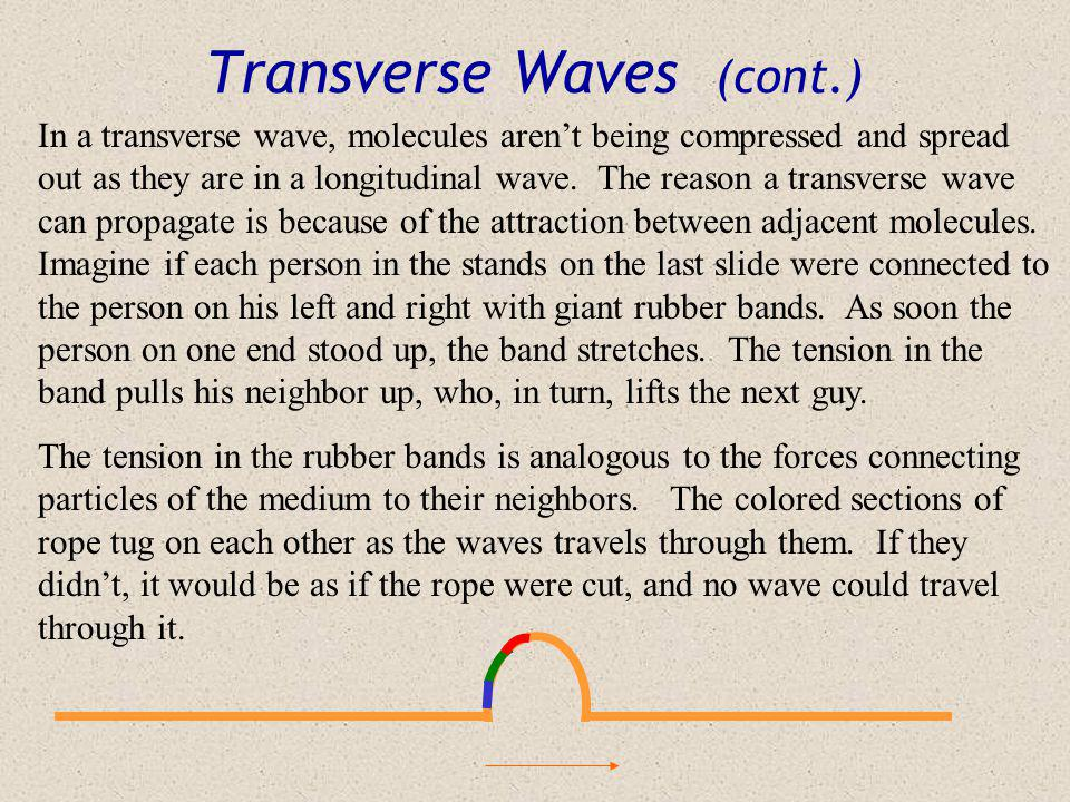 Transverse Waves After a great performance at a drum and bugle corps contest, the audience decides to start a wave in the stands. Each person rises an