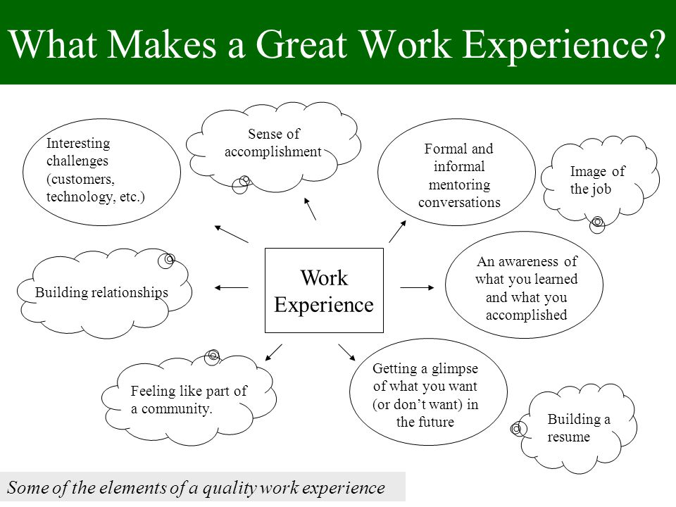What Makes a Great Work Experience.