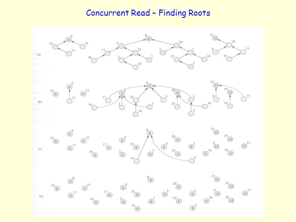 Concurrent Read – Finding Roots