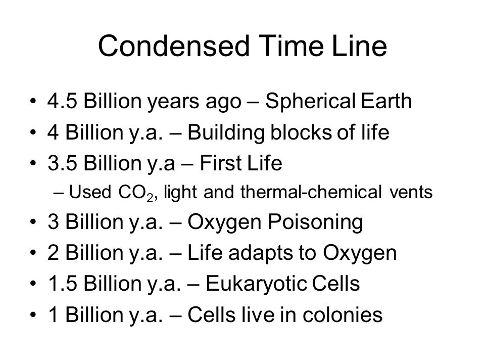 Contd Time Line 700 Million y.a.– Multi-celled life 470 Million y.a.