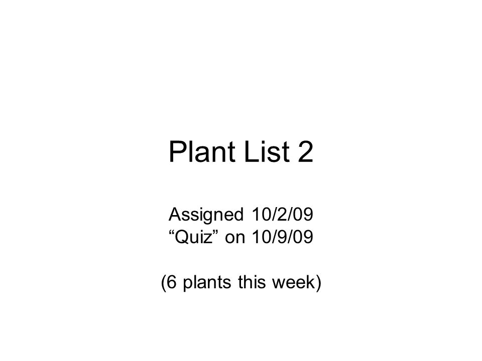 Plant List 2 Assigned 10/2/09 Quiz on 10/9/09 (6 plants this week)