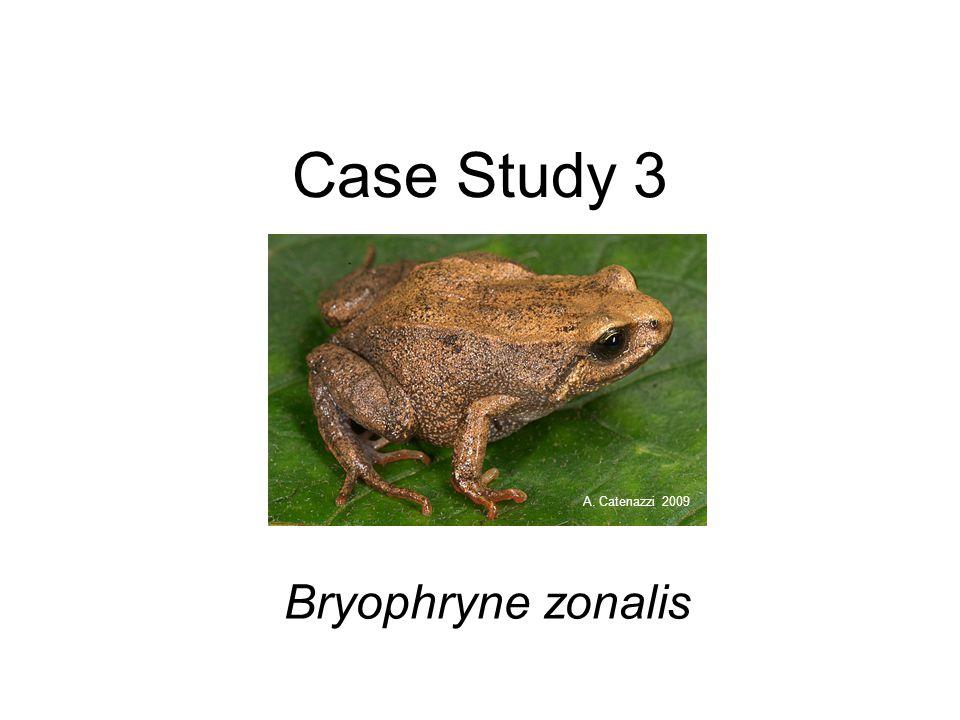 Case Study 3 Bryophryne zonalis A. Catenazzi 2009