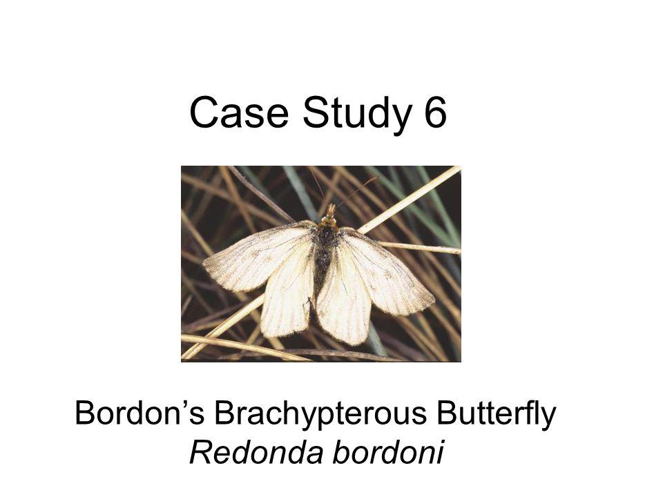 Case Study 6 Bordons Brachypterous Butterfly Redonda bordoni