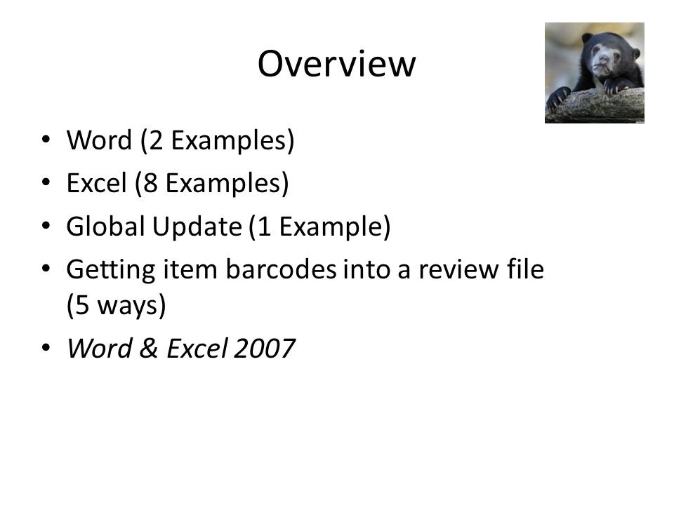 Overview Word (2 Examples) Excel (8 Examples) Global Update (1 Example) Getting item barcodes into a review file (5 ways) Word & Excel 2007