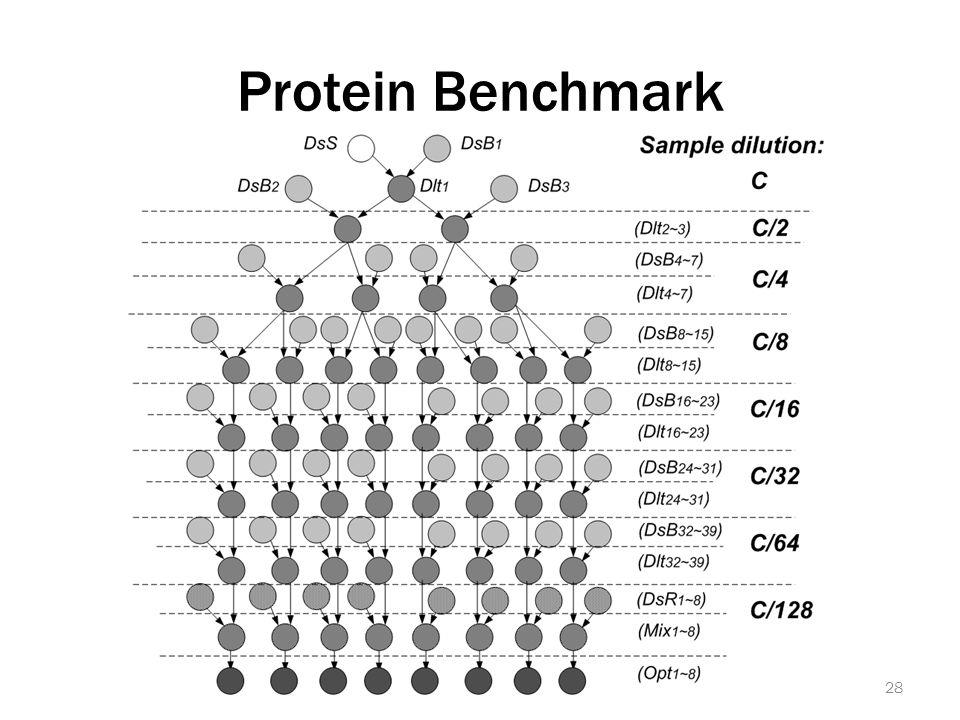 Protein Benchmark 28