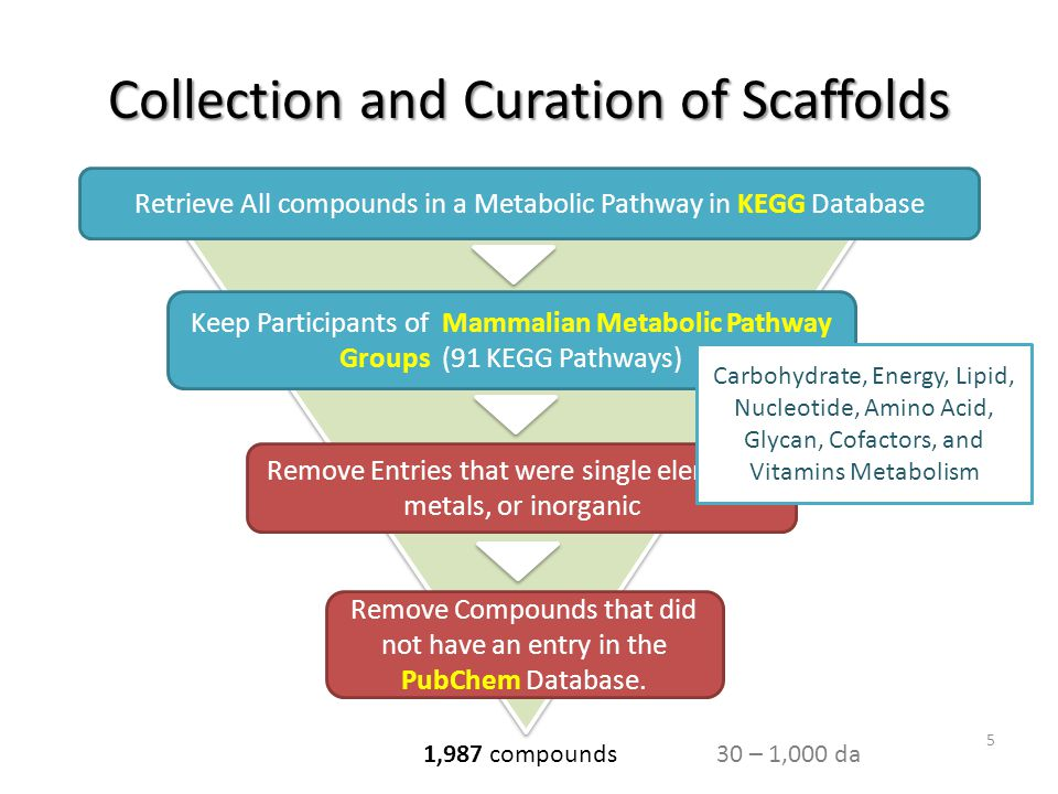 Collection and Curation of Scaffolds Retrieve All compounds in a Metabolic Pathway in KEGG Database Keep Participants of Mammalian Metabolic Pathway G
