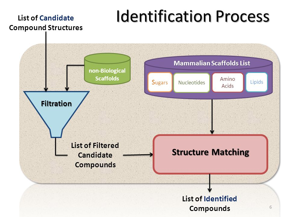 Identification Process Filtration List of Candidate Compound Structures List of Filtered Candidate Compounds Structure Matching List of Identified Com