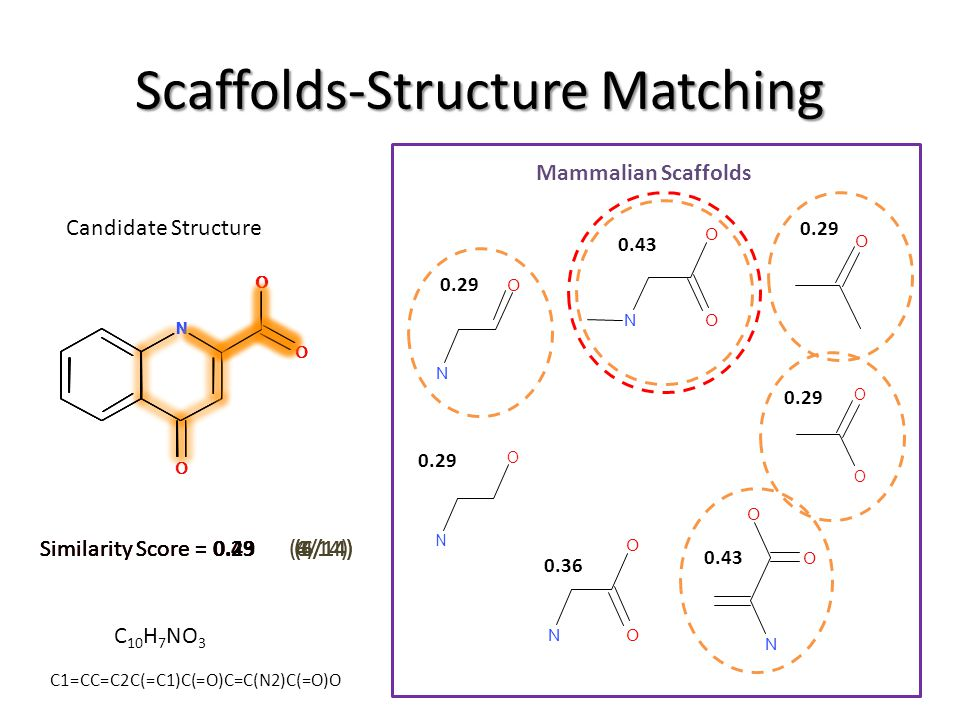 Similarity Score = 0.29 (4/14) Similarity Score = 0.43 (6/14) Similarity Score = 0.29 (4/14)Similarity Score = 0.43 (6/14) Scaffolds-Structure Matchin