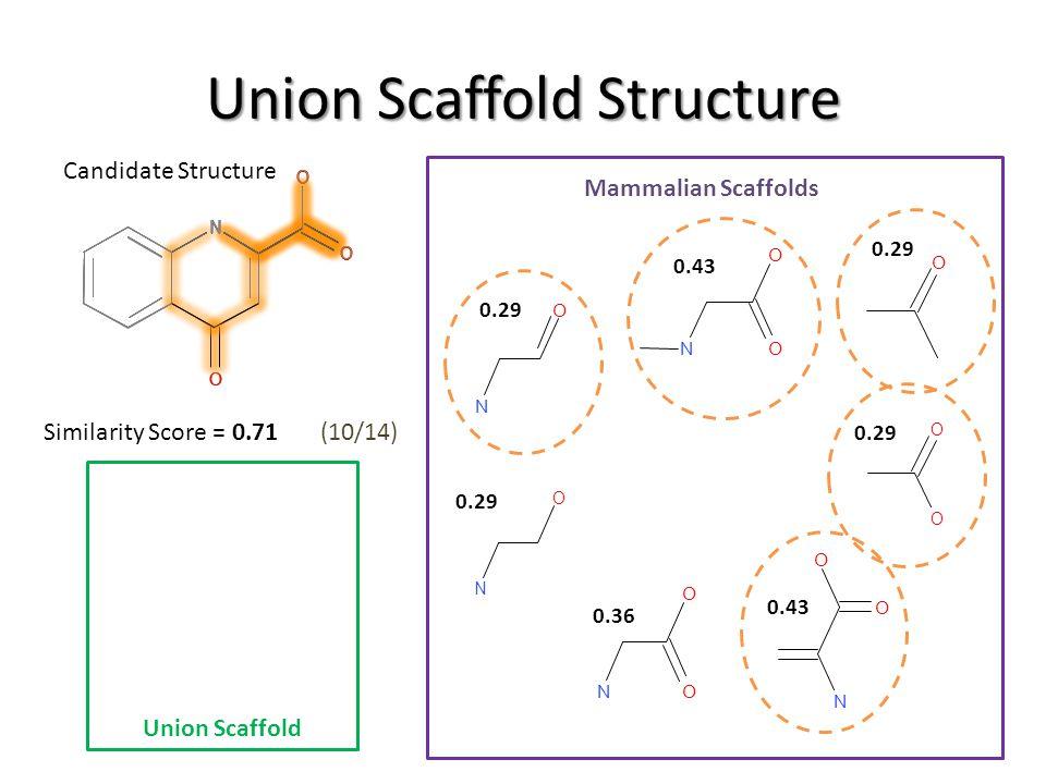 O O O N O O O N O O O N Union Scaffold Structure Candidate Structure Mammalian Scaffolds O O O N N O O ON O N O N O O N O O O O 0.29 0.43 0.29 O O O N