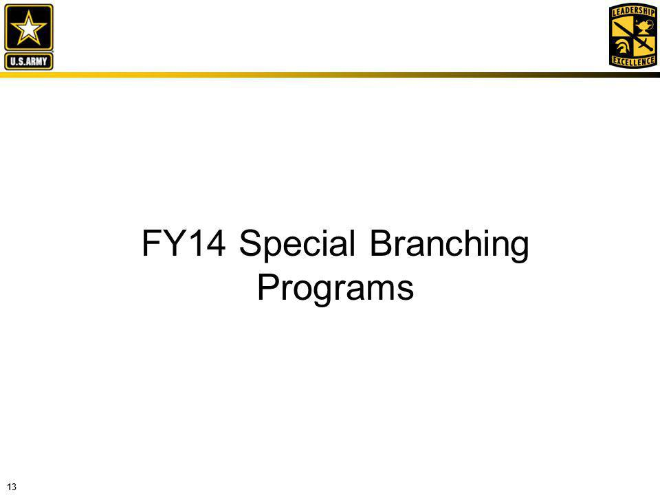 13 FY14 Special Branching Programs